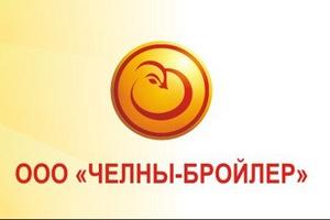 """""""Челны-Бройлер"""" прокомментировала информацию Роспотребнадзора о стафилококке в тушках цыплят"""