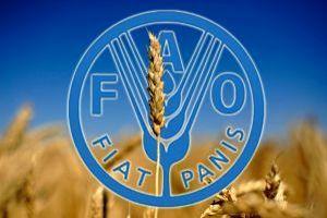ФАО оценила снижение цен на продовольствие в 2018 г. в 3,5%