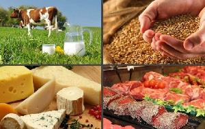 Беларусь увеличила экспорт сельхозпродукции и продовольствия до 3,2 млрд долларов