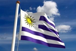 Уругвай будет поставлять в РФ неограниченный объем мяса со сниженной пошлиной - министр