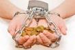 Воронежская птицефабрика «Интерптица» по итогам трех лет банкротства расплатилась лишь с половиной долгов