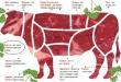 Американская экспортная федерация выпустила Международный номенклатурный справочник по говяжьим отрубам