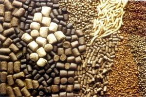 Производство этанола оказывает давление на комбикормовую индустрию США