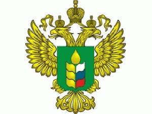 В Минсельхозе России рассмотрен проект подпрограммы по развитию экспорта сельскохозяйственной продукции и продовольствия