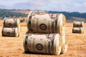 Минсельхоз России: на поддержку сельского хозяйства в регионы направлено 173,3 млрд рублей