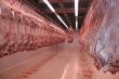 В Астане построят мясоперерабатывающий комплекс мощностью 24 тыс. тонн продукции в год