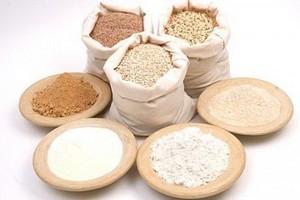 Завод по производству кормовых добавок для животных построят в г.о. Ступино