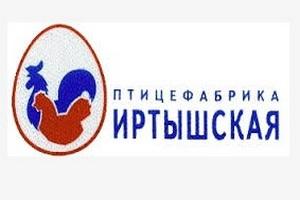 Работники украли 5 тысяч кур-несушек с птицефабрики «Иртышская»