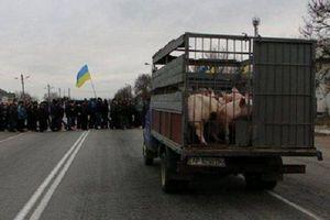 Украинские аграрии перекрыли дороги в 5 областях, протестуя против отмены спецрежима НДС