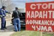 В Мордовии будут производить гусиный хамон