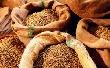 Цены на зерно в рамках закупочных интервенций движутся вниз