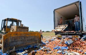 В России с 2014 года выявили почти три тысячи тонн санкционных продуктов