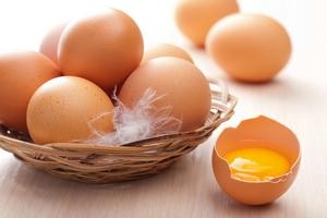 Бельгия заявляет, что Нидерланды обнаружили инсектициды в яйцах еще в 2016 году
