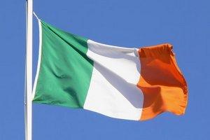 Ирландские фермеры требуют повышения цен на скот