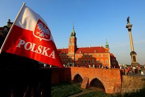 В Польше из-за АЧС тысячи фермеров отказываются от свиноводства
