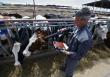 Россельхознадзор встает на защиту ВТО. Ветеринарный контроль подстраивают под нормы международной торговли