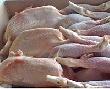 Поставки куриного мяса в Россию выросли более чем в 1,8 раза