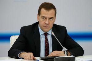 Медведев: введение контрсанкций оказалось выгодно российским аграриям