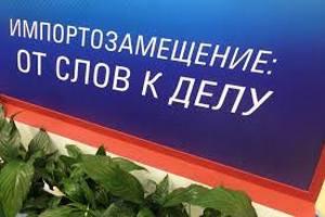 Юрий Крупнов: проектам импортозамещения нужна четкая стратегия