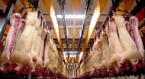 20 крупнейших компаний произвели 3 млн тонн свинины