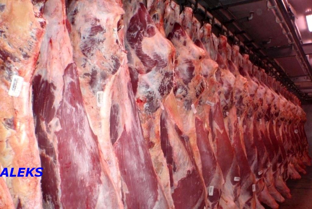 экспорт всех видов мяса - Польша и крахмала в\с