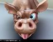 Почему нельзя есть китайскую свинину