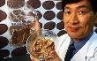 В Японии создали искусственное мясо на основе какашки