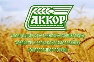 В АККОР критикуют новые ветеринарные правила
