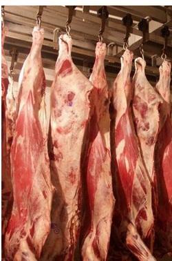 Мясо оптом. Говядина, свинина, конина, субпродукты