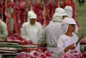 Китай ввел на мясокомбинатах обязательные проверки на АЧС