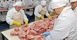 «Тюменский бройлер» увеличил долю продукции глубокой переработки мяса птицы