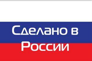 Какие зарубежные продукты стали производить в России после эмбарго