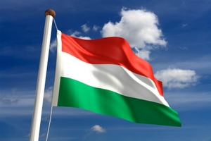 Венгрия предложила новгородцам совместные проекты в сельском хозяйстве
