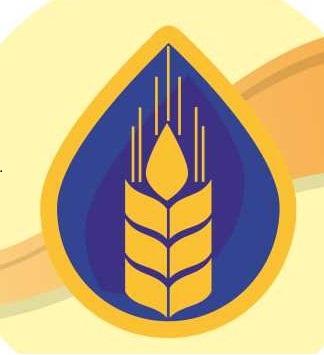 Глютен кукурузный