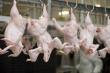 Промышленное производство птицы продолжает снижаться