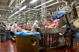 В Волгоградской области построят новый завод по переработке мяса и молока