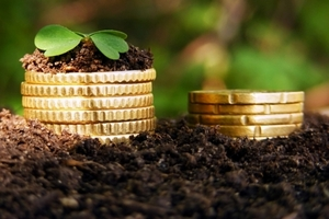 Курский агрохолдинг «Надежда» планирует до 2020 года направить более 24 млрд рублей в свое развитие