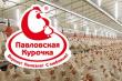 Павловскую птицефабрику ассоциации «Изумрудной страны» вновь выставили на торги