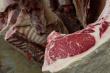 Удмуртская республика: В Ижевске сожгли более 30 килограммов мяса диких животных