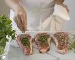 Потребление свинины на душу населения увеличилось до 19,9 кг в год