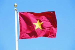 Вьетнам: экспортеры из США демпингуют, отгружая курятину на рынок страны