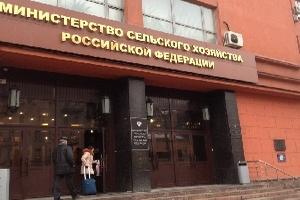 Минсельхоз РФ представил проект об ограничении госзакупок импортного продовольствия
