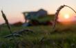 Аграрный локомотив на запасных путях стагнации. Итоги года в сельском хозяйстве и пищевой промышленности