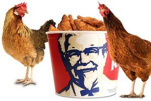 Открылся первый ресторан KFC в Узбекистане