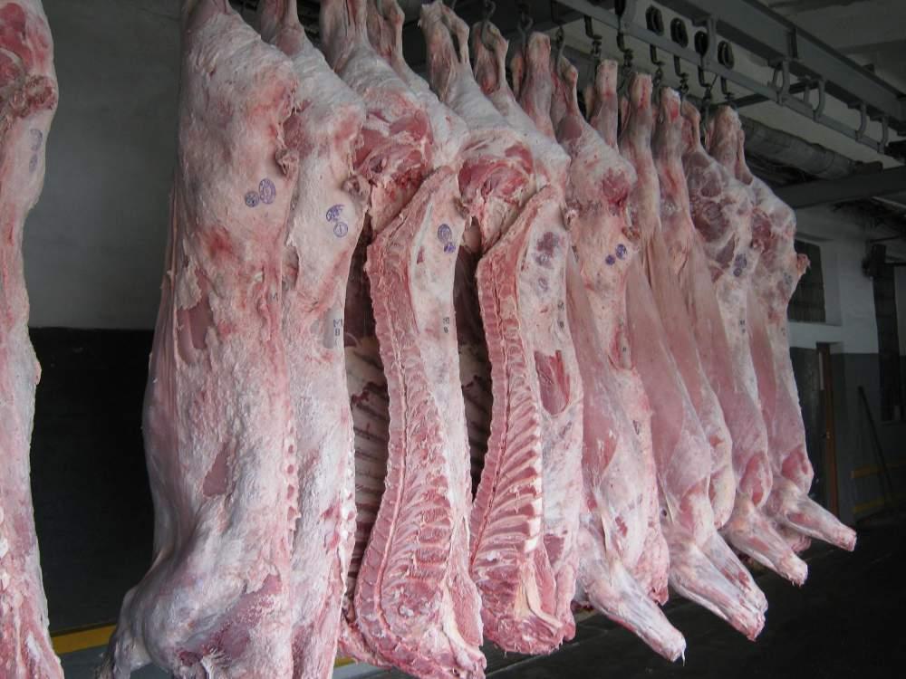 Охлажденное и замороженное мясо КРС и МРС