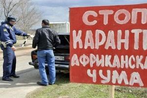 Выноса АЧС за пределы очага в Калининском районе в Саратовской области не прогнозируется