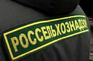 В Калининграде суд на месяц закрыл мясокомбинат после проверки Россельхознадзора