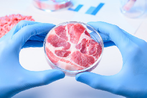 За какое время можно вырастить кусок искусственного мяса?
