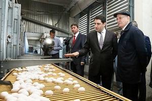 Глава Башкортостана посетил птицефабрику «Башкирская»