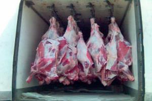 На Пулковском шоссе похитили фуру с мясом